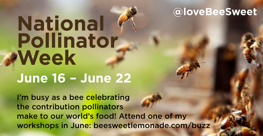 pollinator_week3