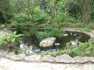 Zilker Pond IMG_0544